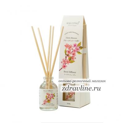 Cherry Blossom (Цветущая Вишня)